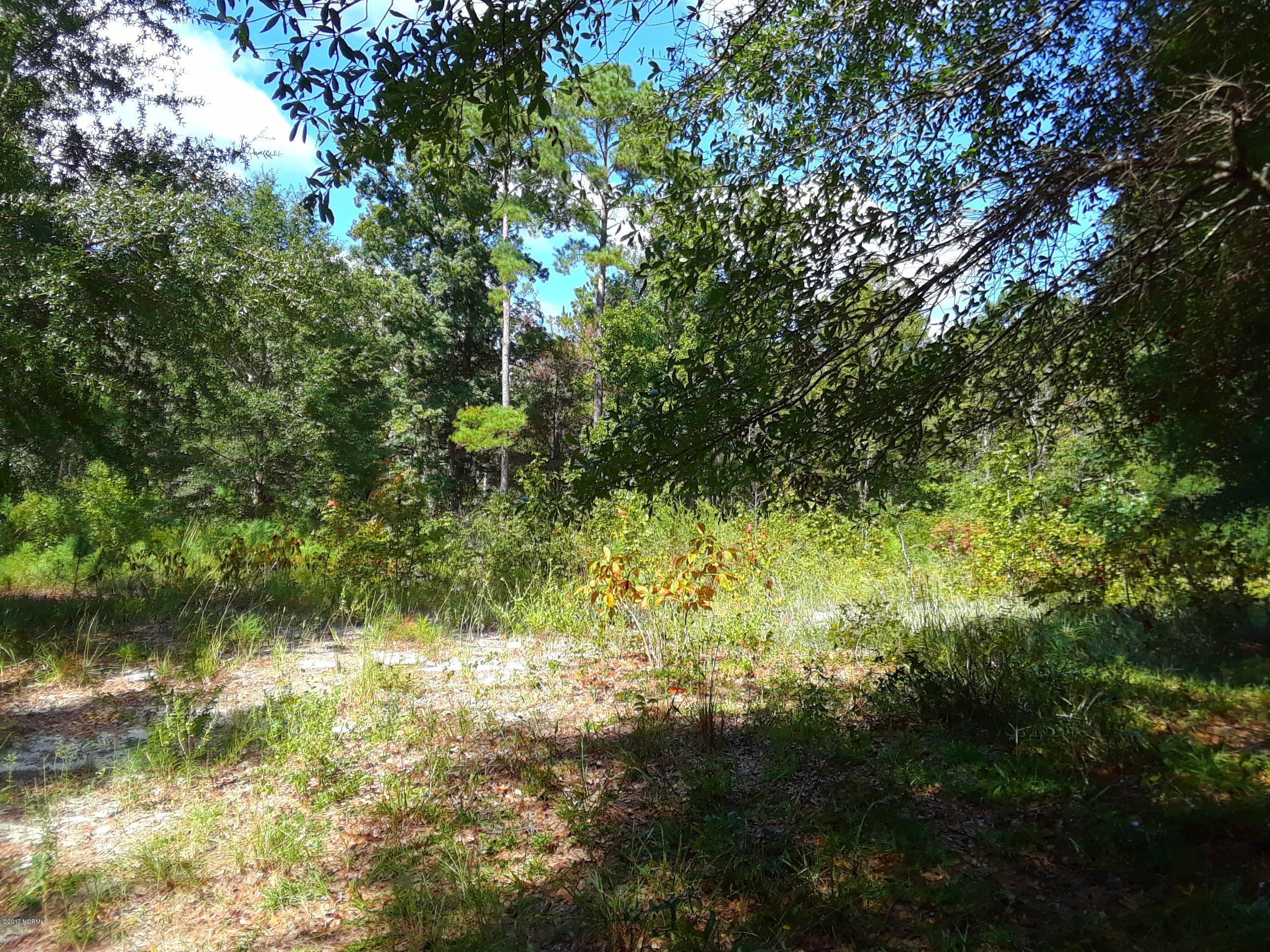 3720 Marsh Hen Drive, Shallotte, North Carolina 28470, ,Residential land,For sale,Marsh Hen,100084082