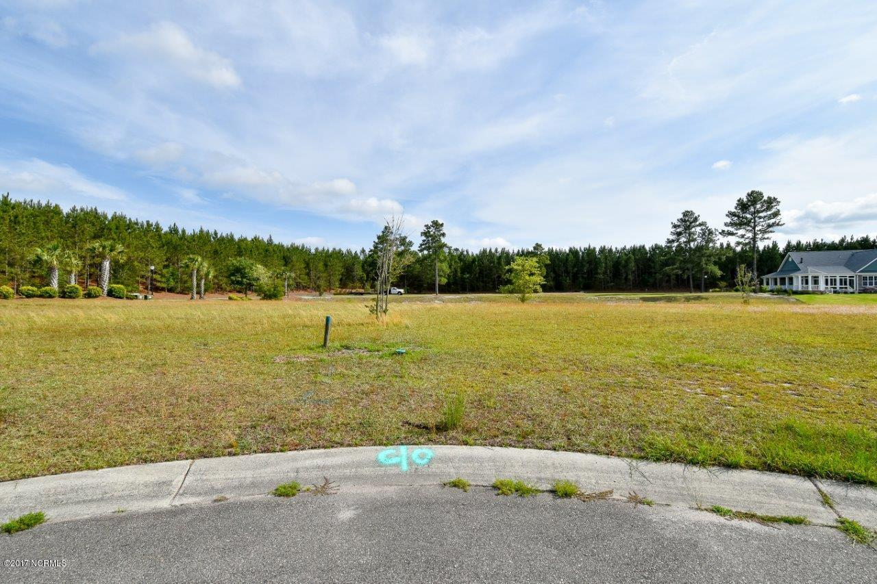 1005 Layne Court, Leland, North Carolina 28451, ,Residential land,For sale,Layne,100085105