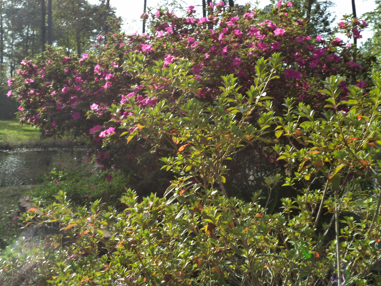 813 Murdock Lee Lane, Bolivia, North Carolina 28422, ,Wooded,For sale,Murdock Lee,100085210