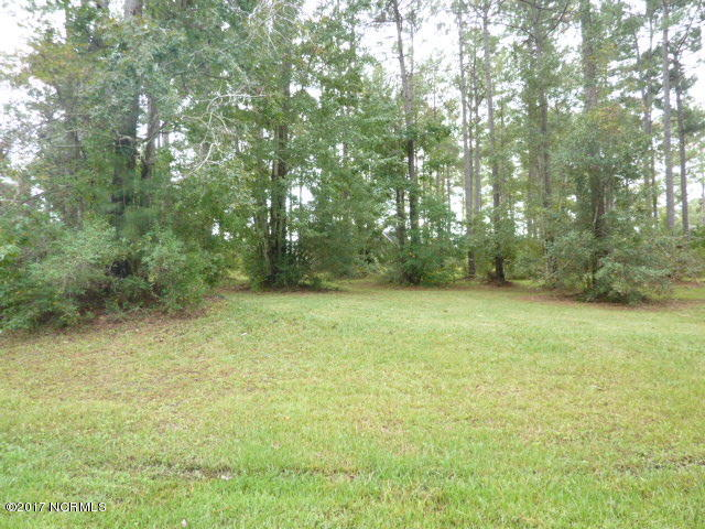 Carolina Plantations Real Estate - MLS Number: 100085991