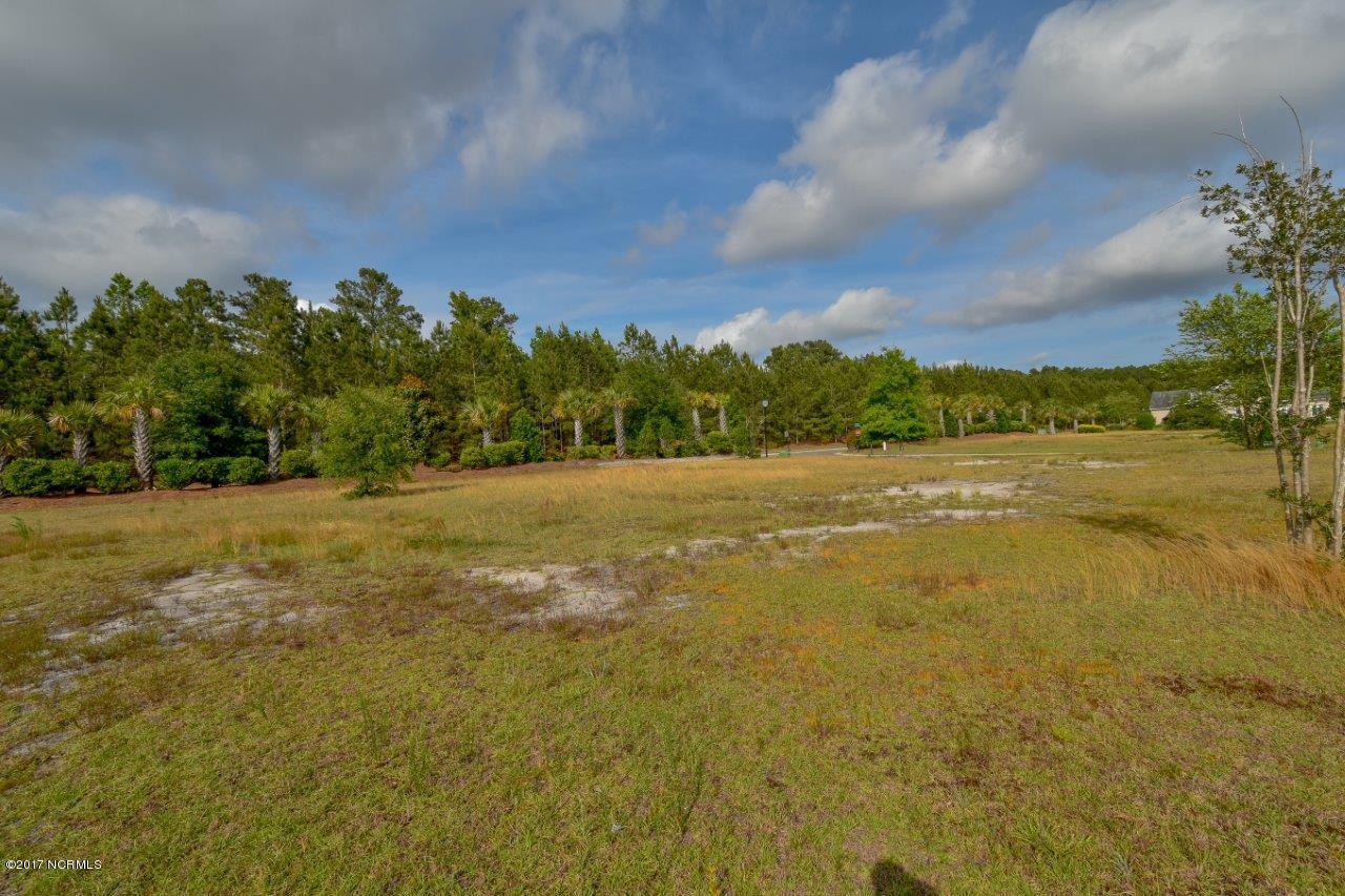 1002 Daybreak Court, Leland, North Carolina 28451, ,Residential land,For sale,Daybreak,100086426