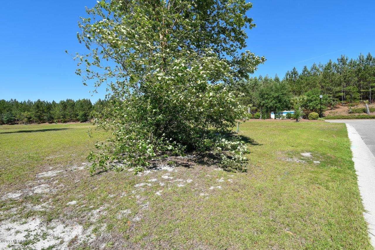 Carolina Plantations Real Estate - MLS Number: 100086431