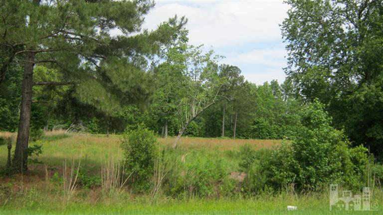 205 Country Club Drive, Wallace, North Carolina 28466, ,Residential land,For sale,Country Club,100086593