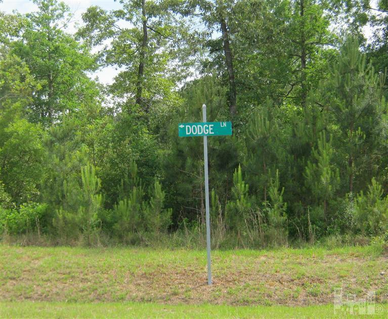22 Dodge Lane, Wallace, North Carolina 28466, ,Residential land,For sale,Dodge,100086591