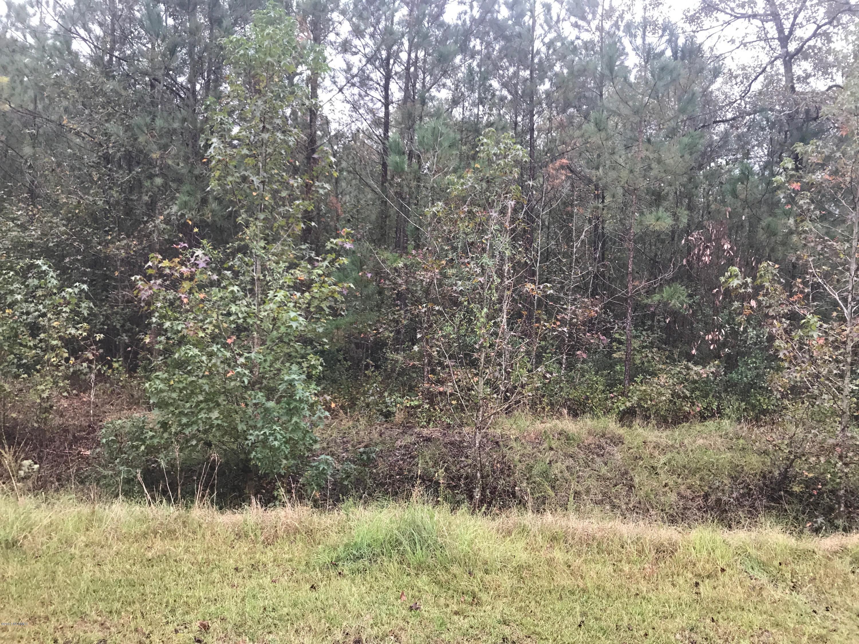 124 Dodge Lane, Wallace, North Carolina 28466, ,Residential land,For sale,Dodge,100086597
