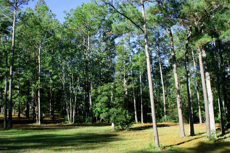 Carolina Plantations Real Estate - MLS Number: 100087088