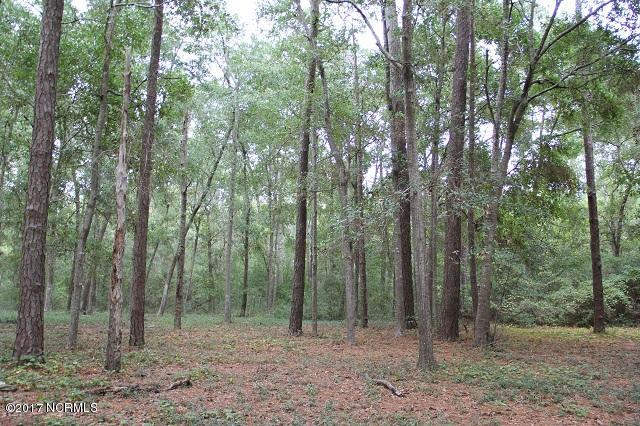 Carolina Plantations Real Estate - MLS Number: 100088031