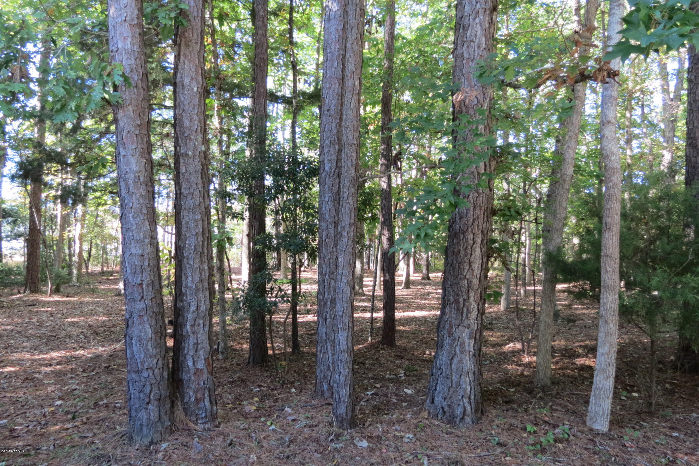 410 Whittaker Point Road, Oriental, North Carolina 28571, ,Residential land,For sale,Whittaker Point,100088430