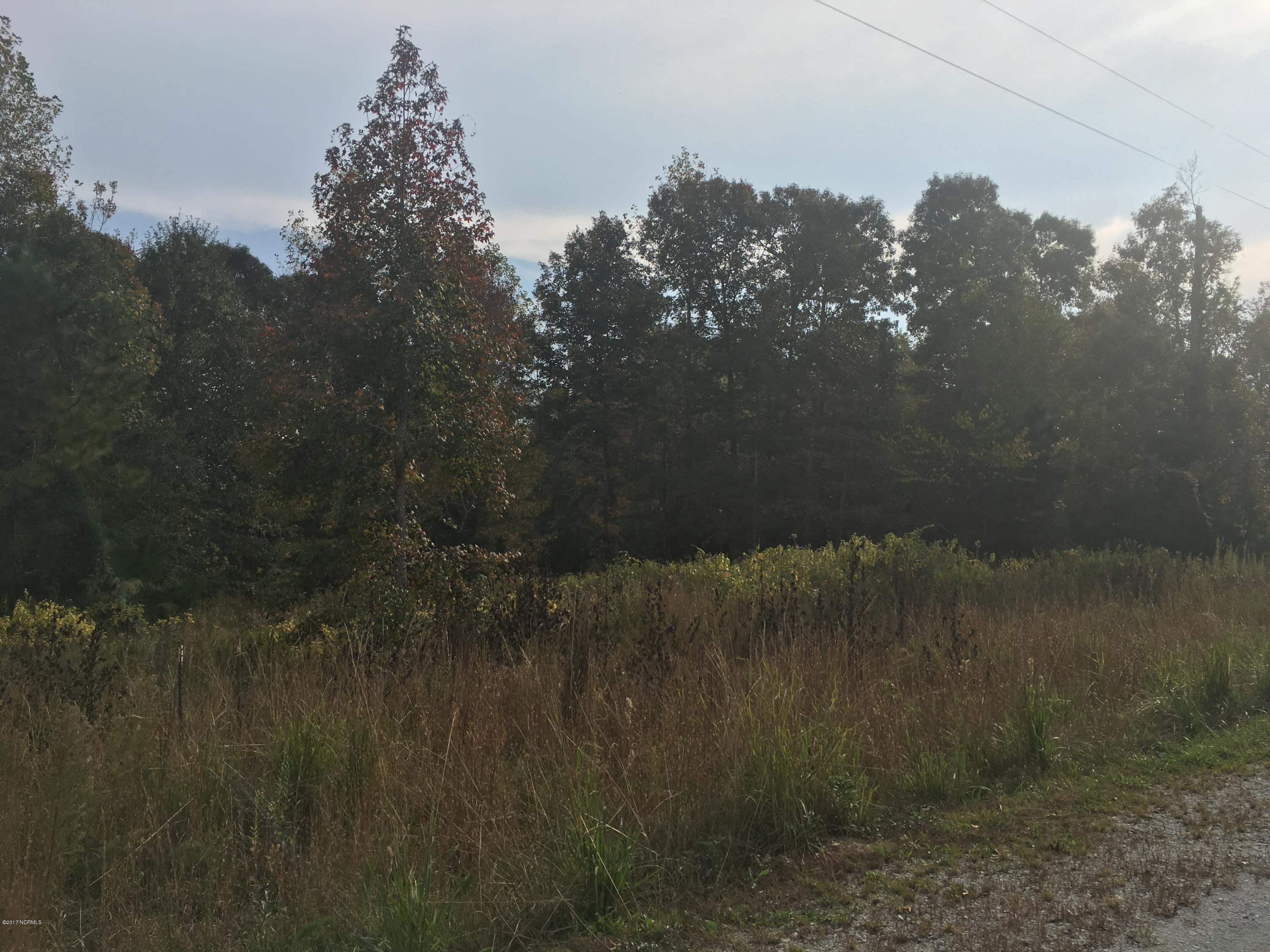 260 Everett Yopp Drive, Sneads Ferry, North Carolina 28460, ,Residential land,For sale,Everett Yopp,100090044