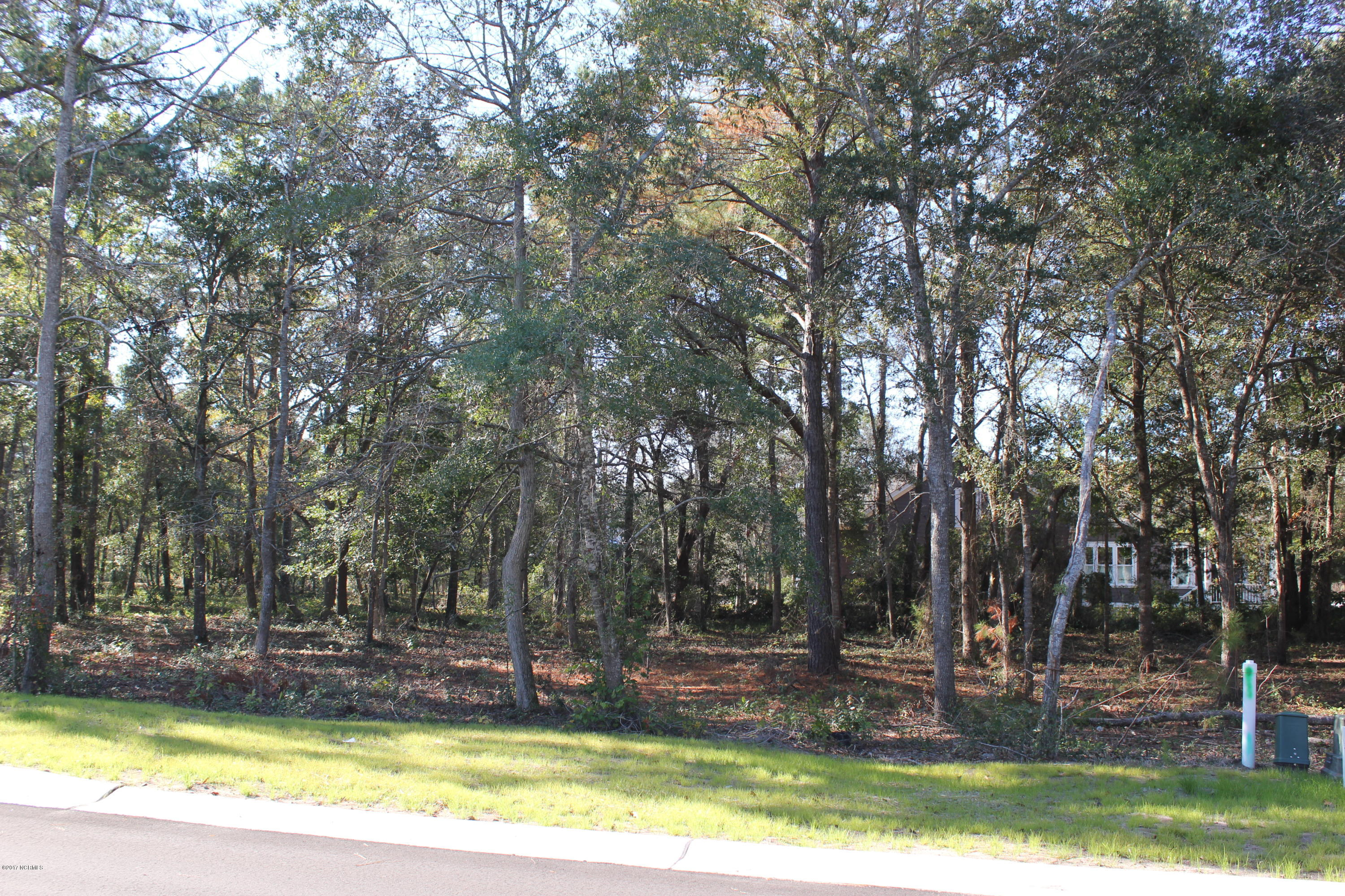 654 Wild Rose Way, Southport, North Carolina 28461, ,Residential land,For sale,Wild Rose,100092709
