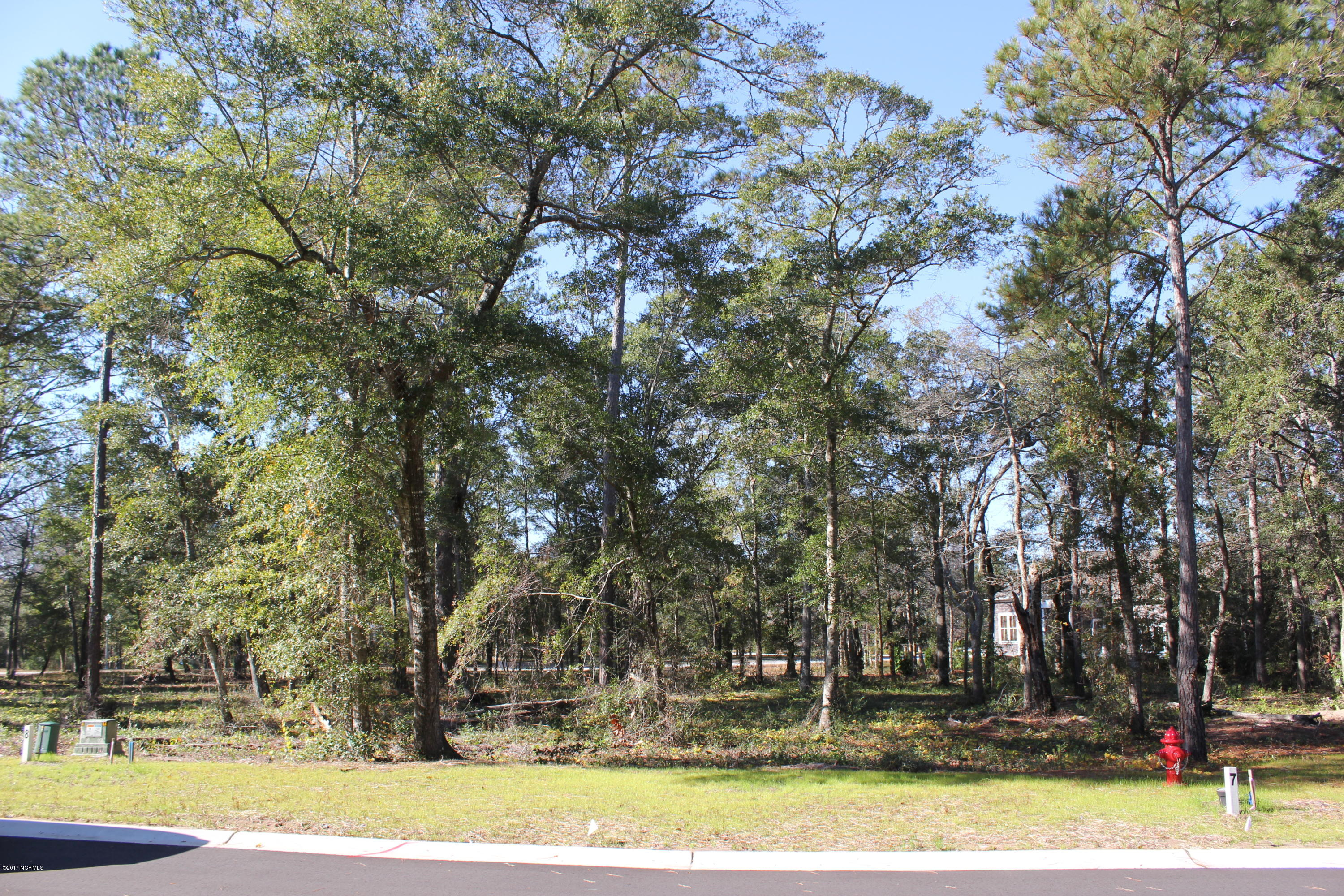646 Wild Rose Way, Southport, North Carolina 28461, ,Residential land,For sale,Wild Rose,100092701