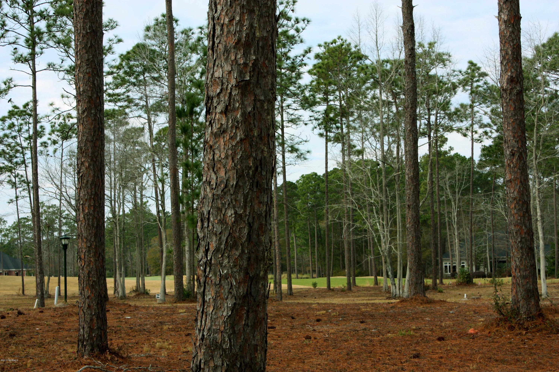 Carolina Plantations Real Estate - MLS Number: 100094306