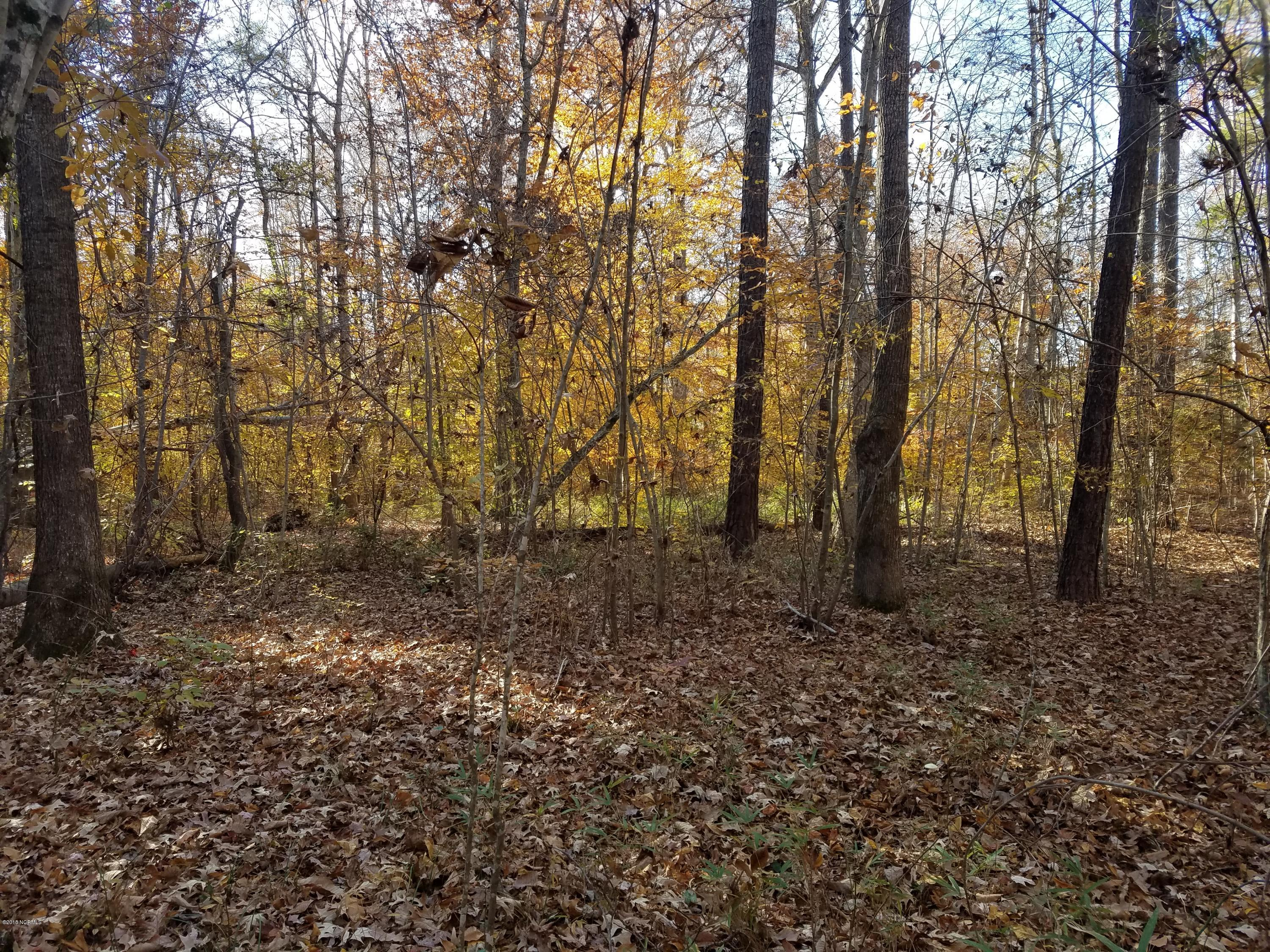 5 See View Lane, Hertford, North Carolina, ,Residential land,For sale,See View,100058164