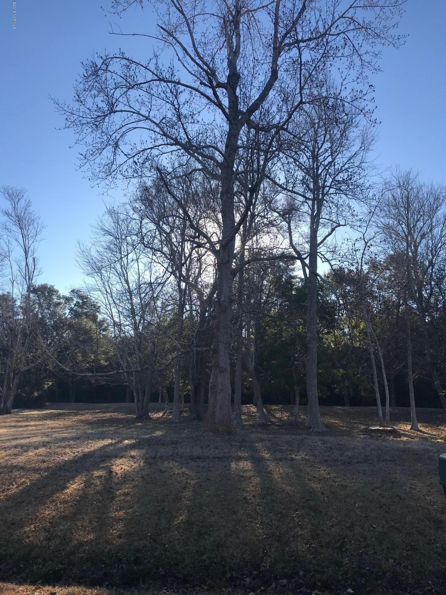 1781 Sandalwood Drive, Ocean Isle Beach, North Carolina 28469, ,Residential land,For sale,Sandalwood,100095587