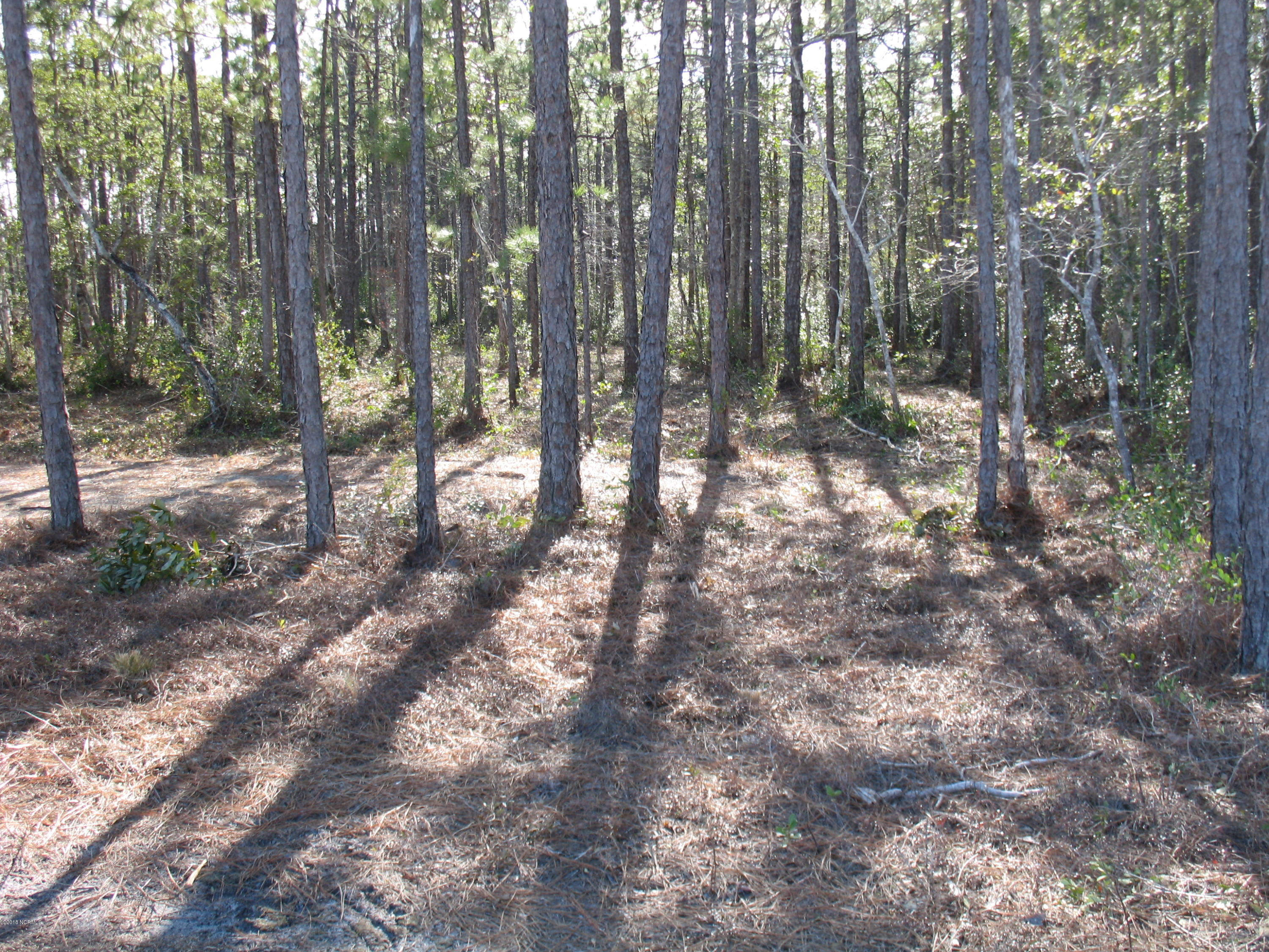 4699 Sugarberry Drive, Shallotte, North Carolina 28470, ,Residential land,For sale,Sugarberry,100097807
