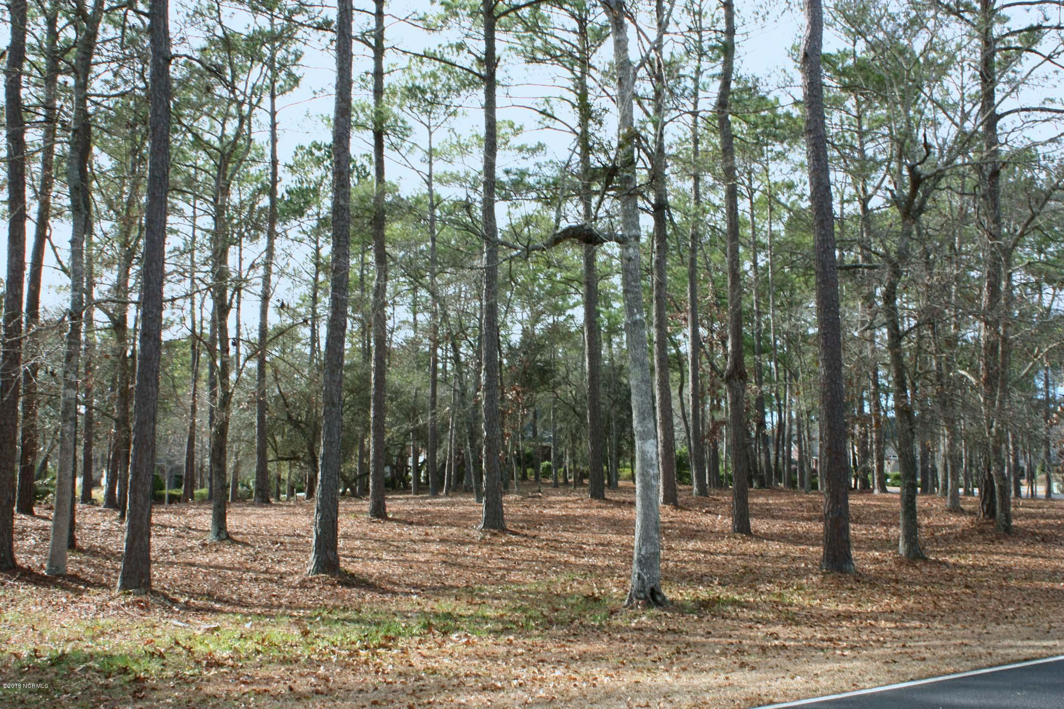 Carolina Plantations Real Estate - MLS Number: 100099322