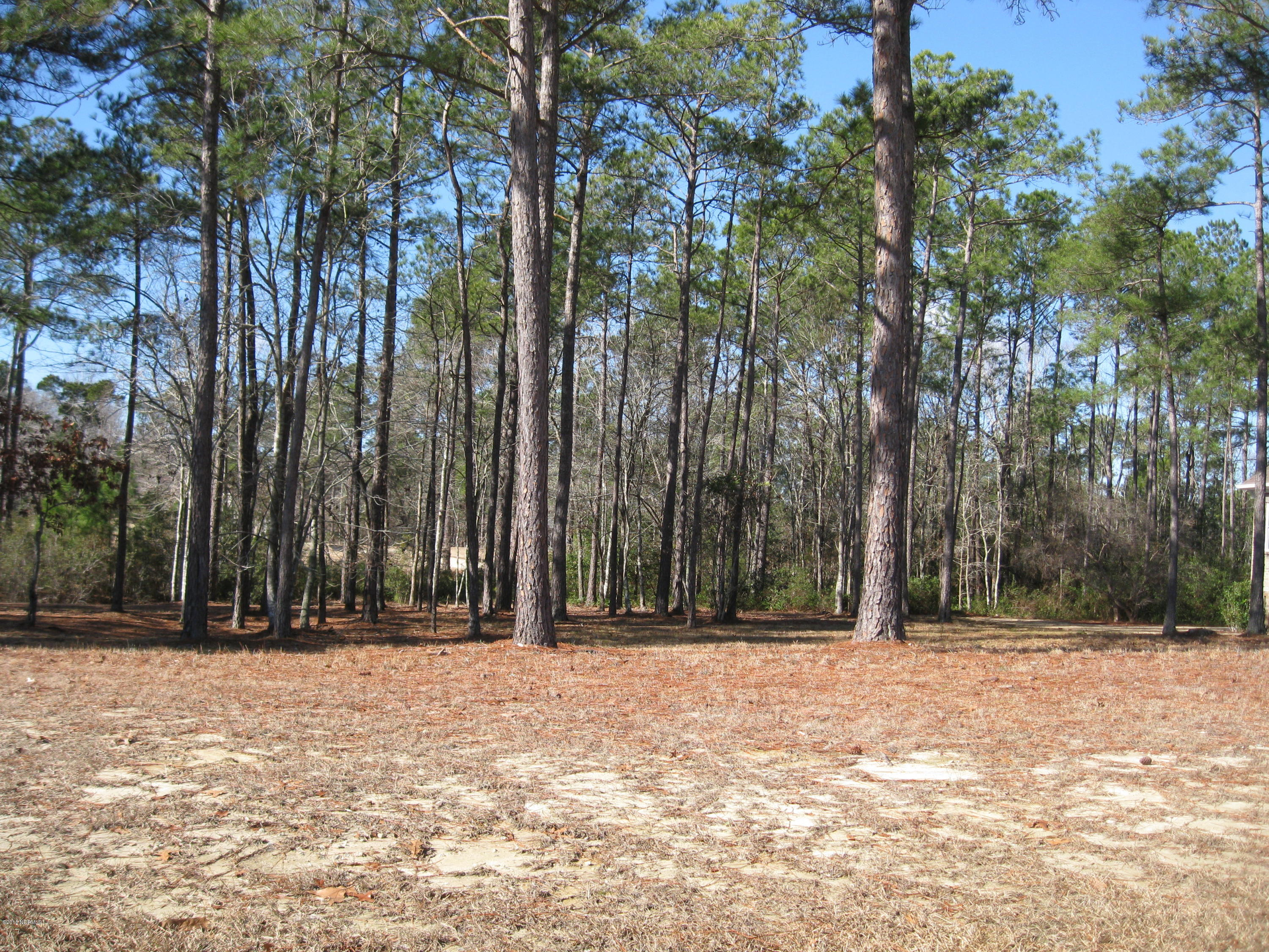 Carolina Plantations Real Estate - MLS Number: 100099272