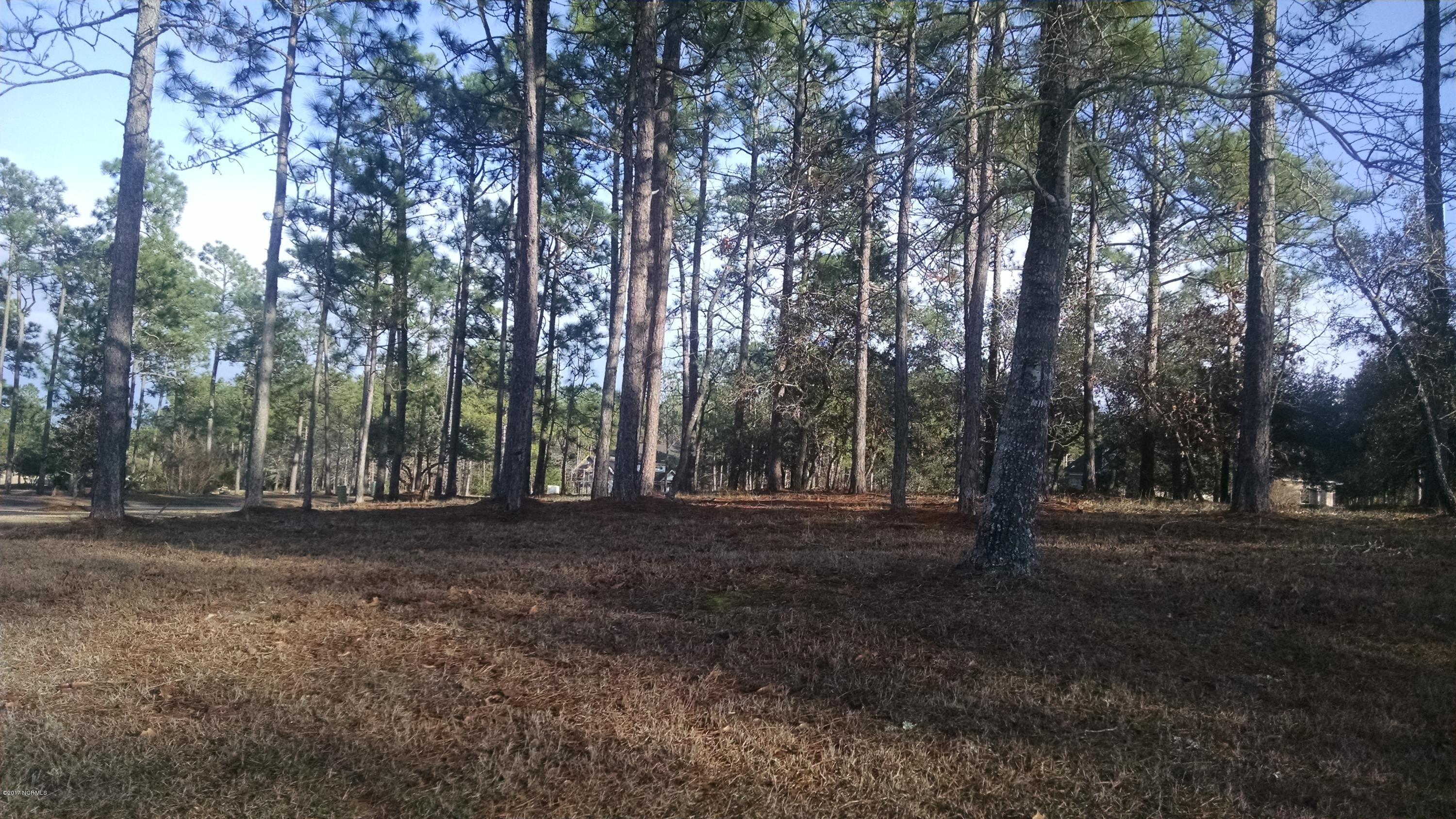 538 Westchester Place, Ocean Isle Beach, North Carolina 28469, ,Residential land,For sale,Westchester,100100650