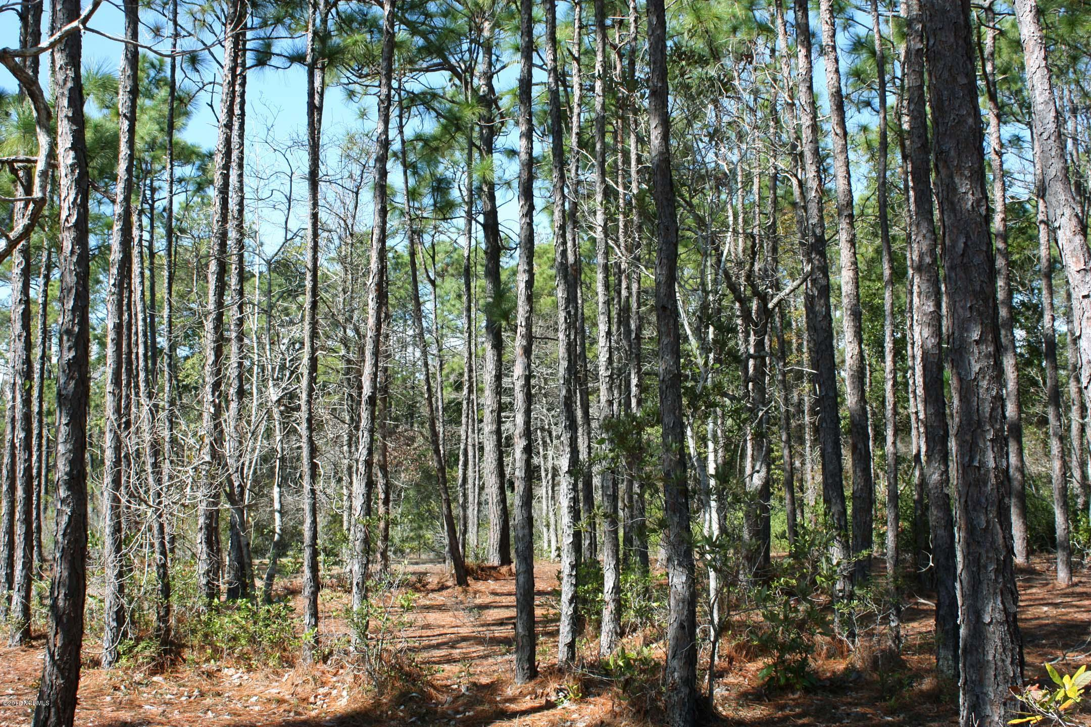Carolina Plantations Real Estate - MLS Number: 100101851