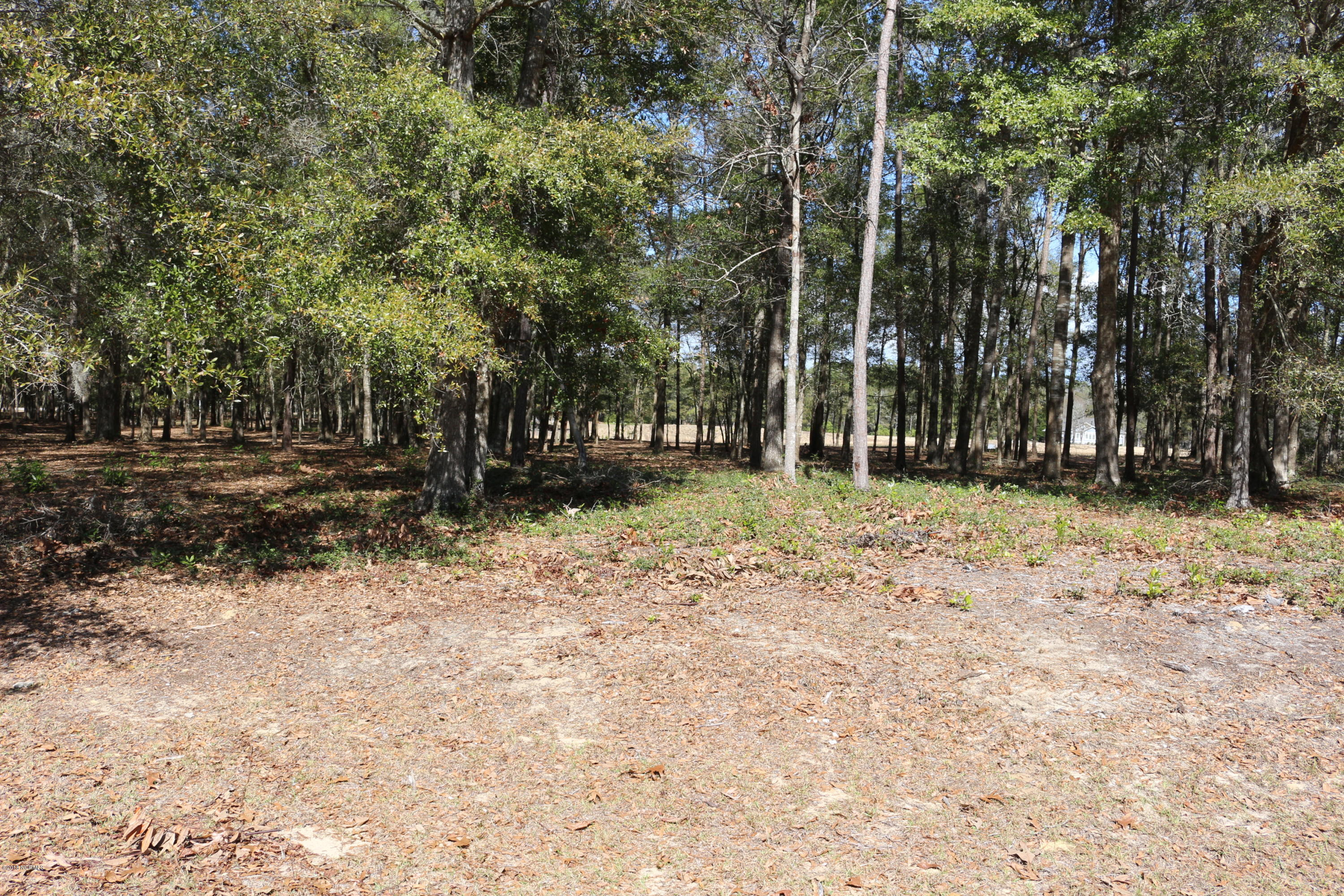 3406 Heron Lake Drive, Supply, North Carolina, ,Residential land,For sale,Heron Lake,100103149