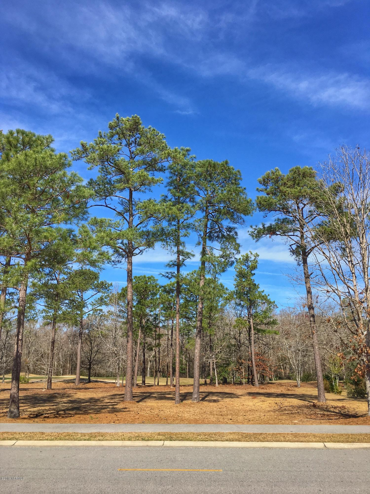 Carolina Plantations Real Estate - MLS Number: 100103276