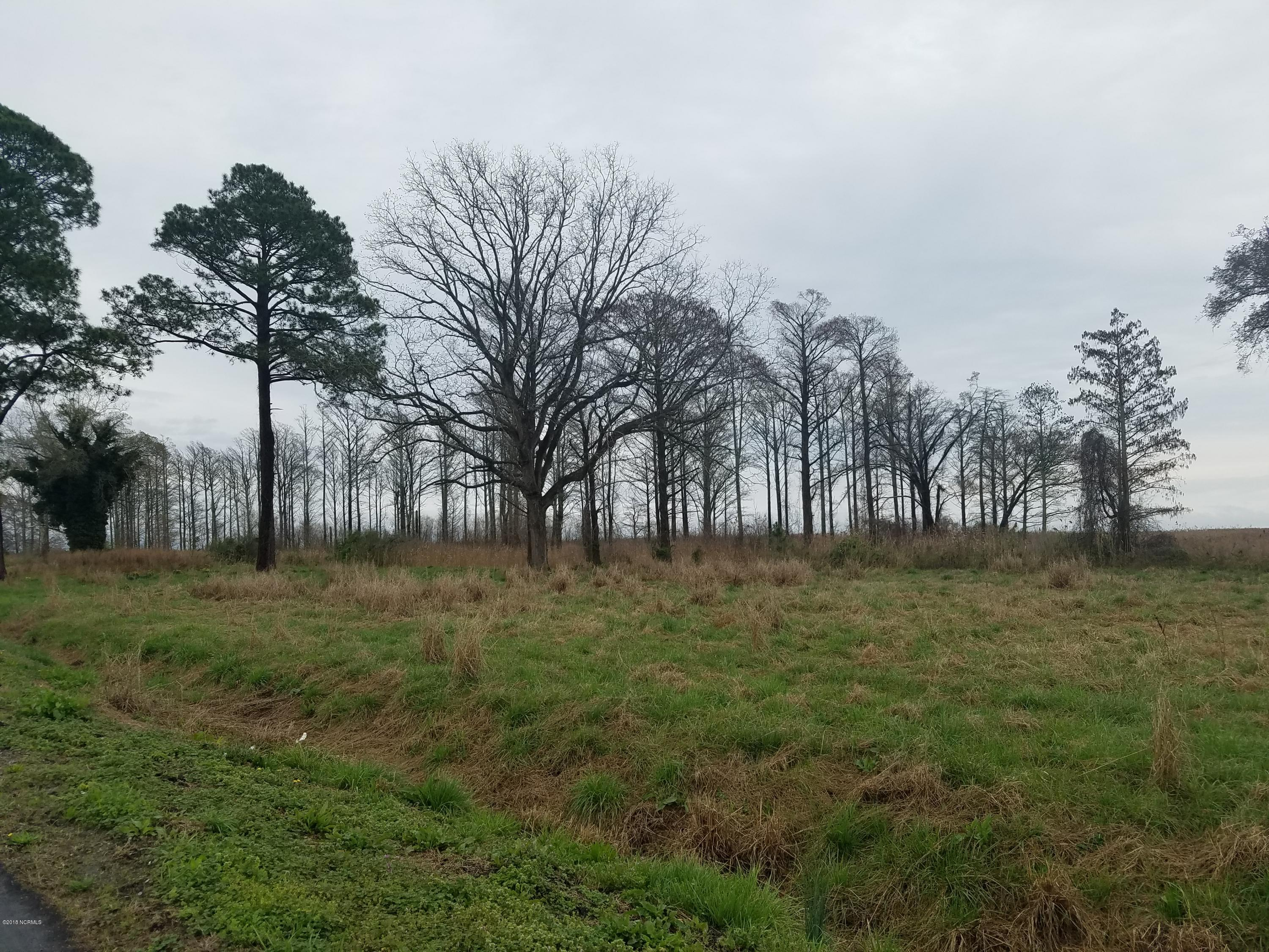 Lot 6 Nc 94, Fairfield, North Carolina, ,Undeveloped,For sale,Nc 94,100103335
