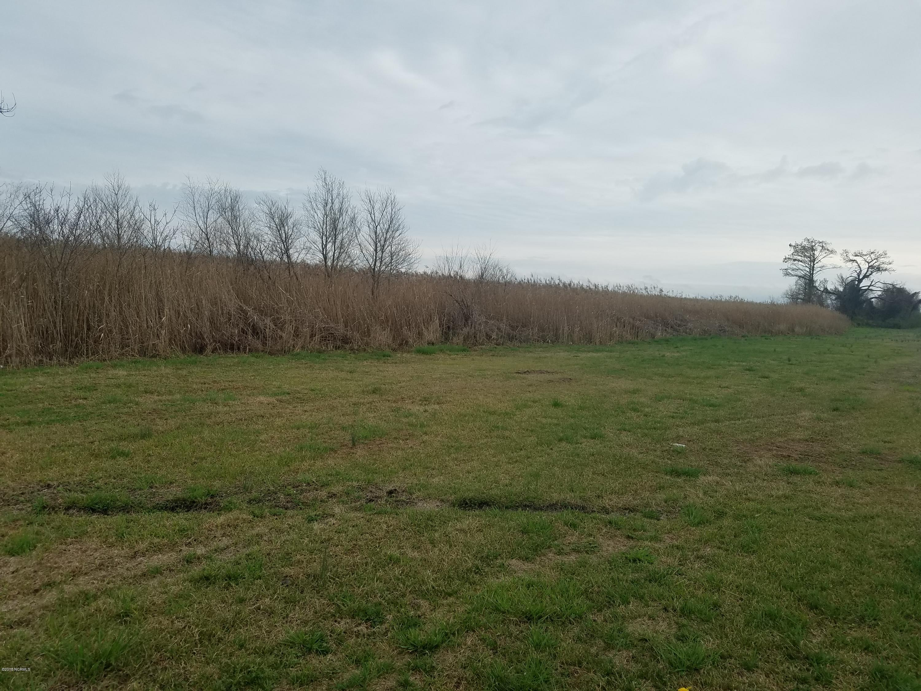Lot 5 Nc 94, Fairfield, North Carolina, ,Undeveloped,For sale,Nc 94,100103356