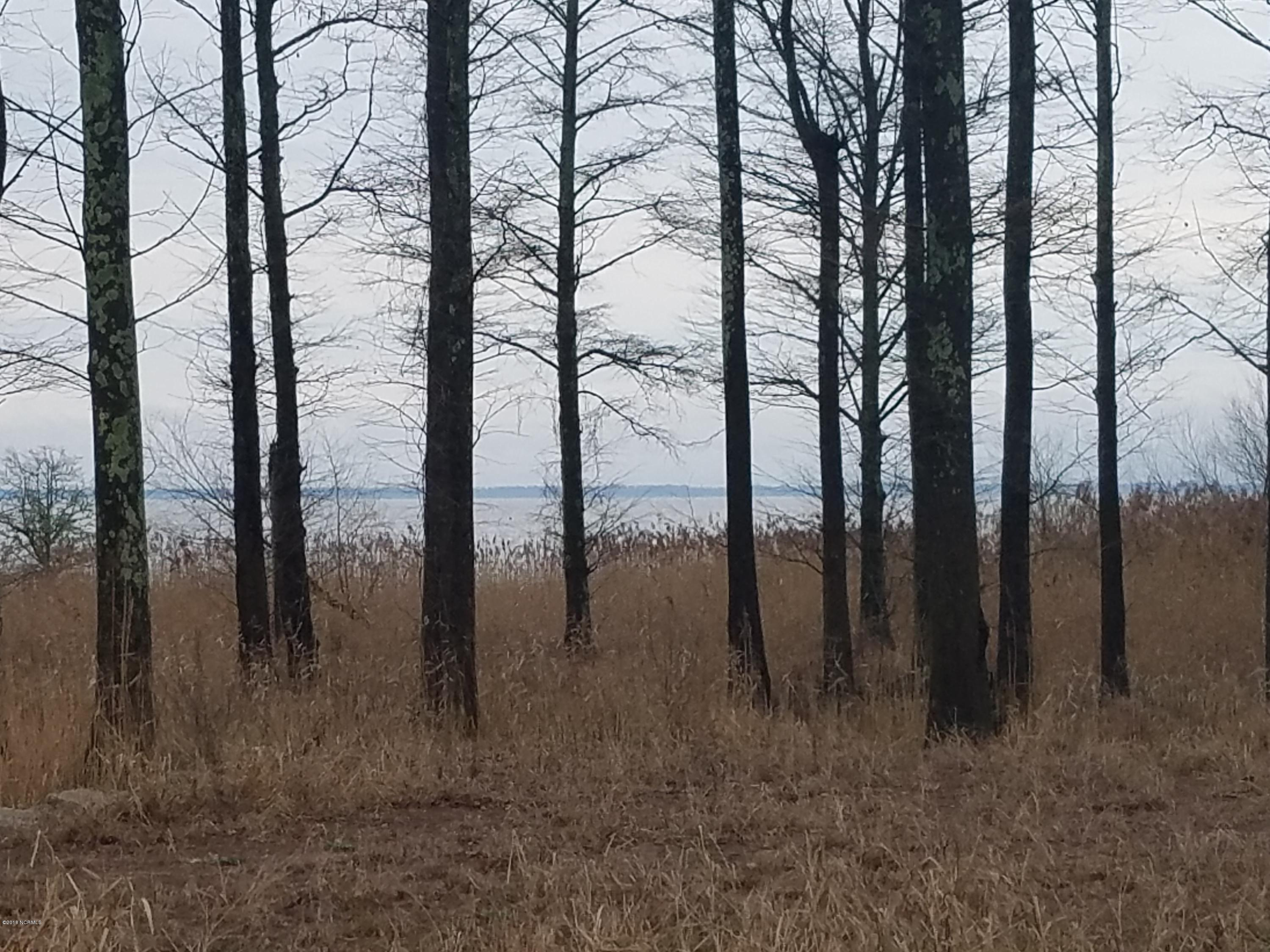 Lot 3 Nc 94, Fairfield, North Carolina, ,Undeveloped,For sale,Nc 94,100103360