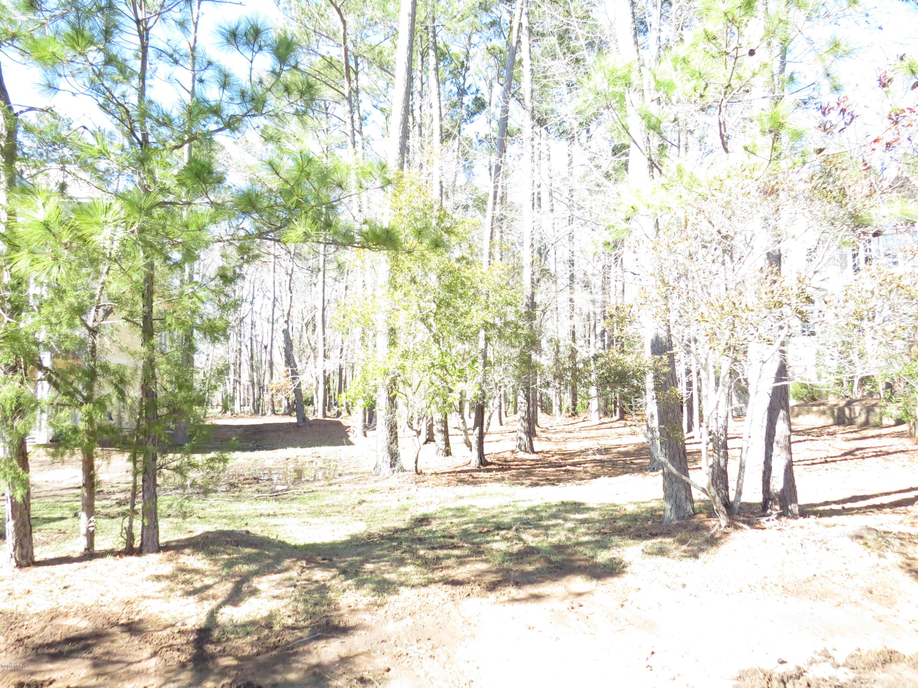 4395 Polly Gully Court, Southport, North Carolina, ,Residential land,For sale,Polly Gully,100103923