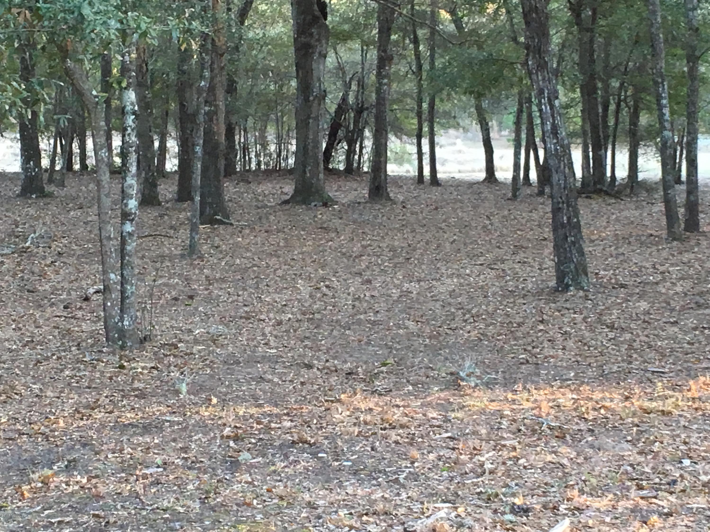 2004 Healing Water Lane, Supply, North Carolina, ,Residential land,For sale,Healing Water,100104482