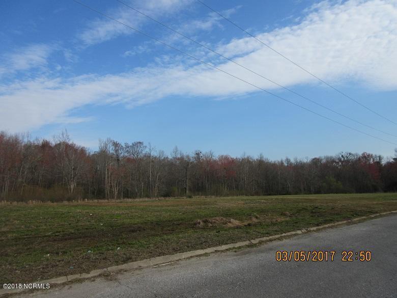 0 Us Hwy 117, Burgaw, North Carolina, ,For sale,Us Hwy 117,100105676