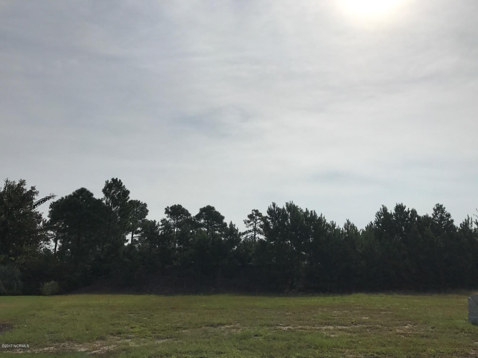 Carolina Plantations Real Estate - MLS Number: 100106341