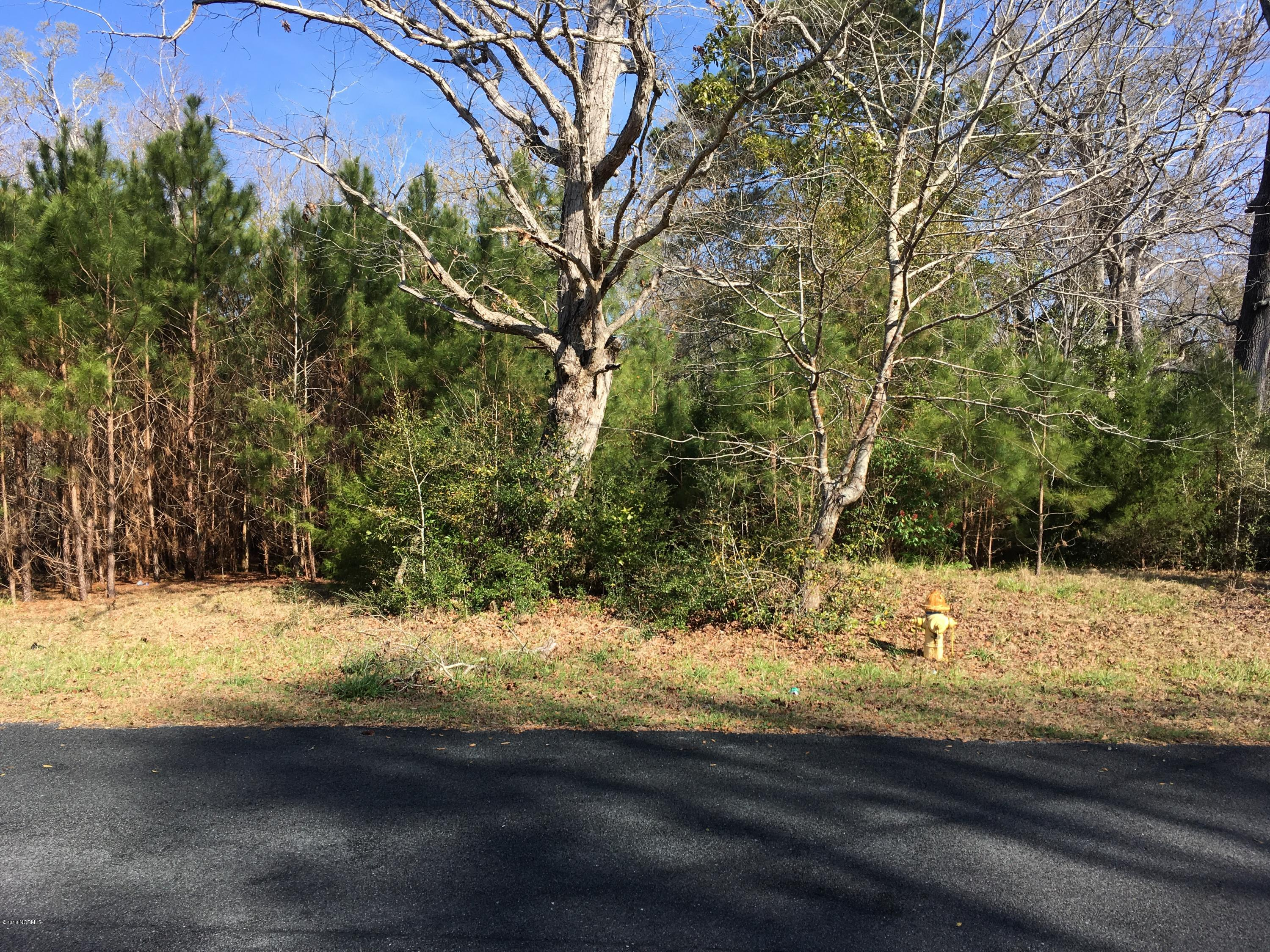 Carolina Plantations Real Estate - MLS Number: 100106453