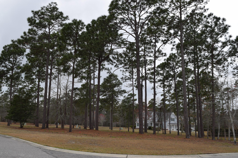 Carolina Plantations Real Estate - MLS Number: 100106694