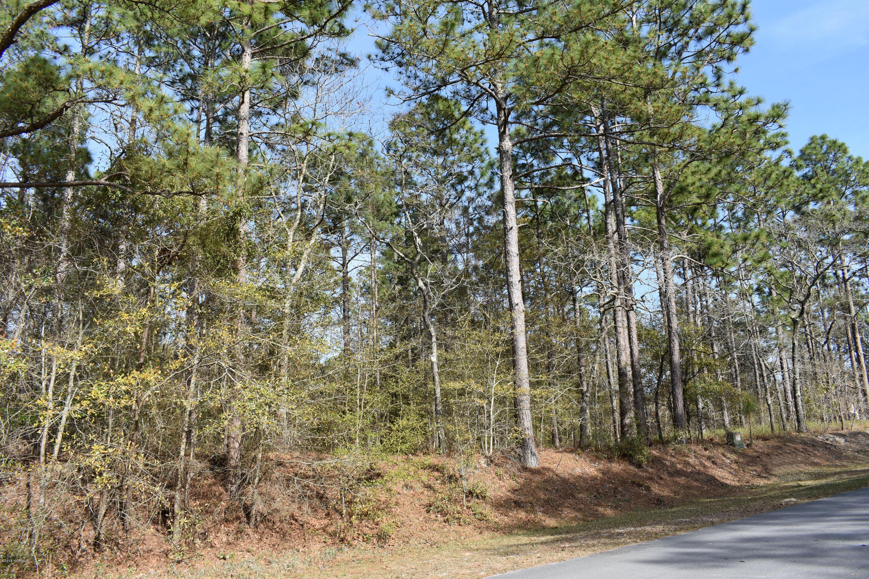 Lot 5a Hardison Drive, Minnesott Beach, North Carolina 28510, ,Wooded,For sale,Hardison,100107858