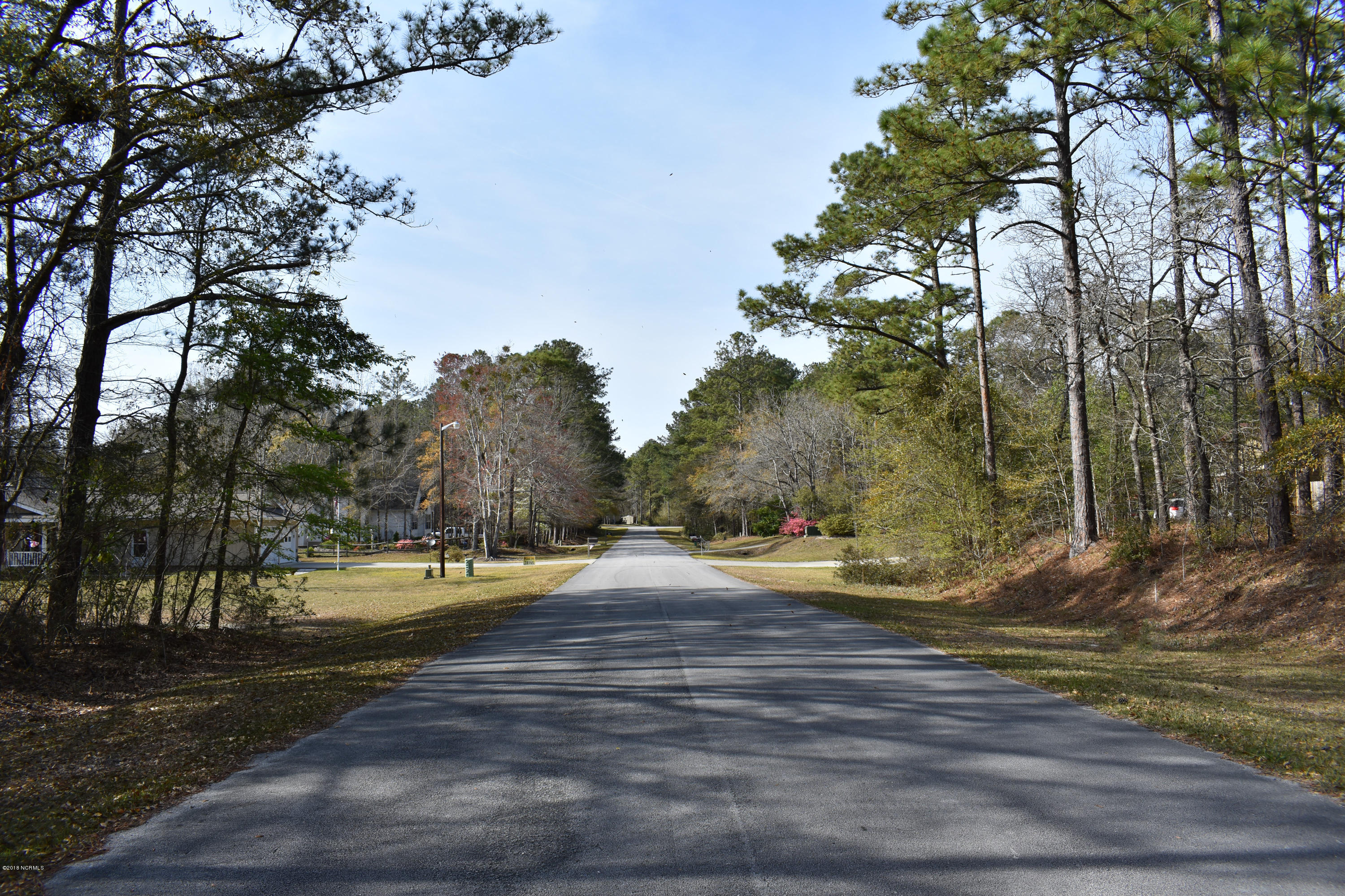 Lot 5a Hardison Drive, Minnesott Beach, North Carolina 28510, ,Wooded,For sale,Hardison,100107858