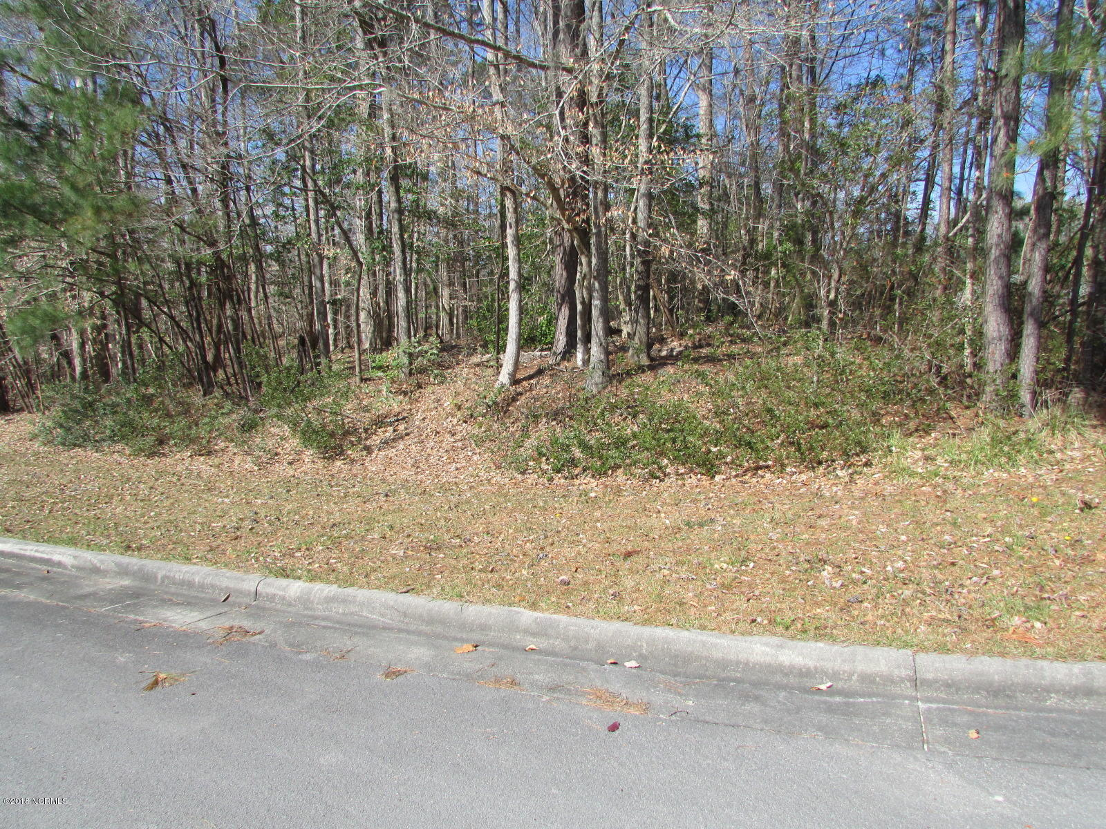 314 Neuse Harbour Boulevard, New Bern, North Carolina 28560, ,Residential land,For sale,Neuse Harbour,100109532