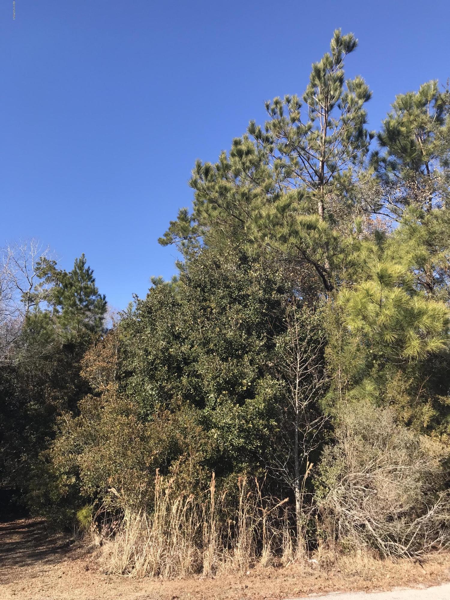 9722 Rivergate Road, Ash, North Carolina 28420, ,Residential land,For sale,Rivergate,100109757