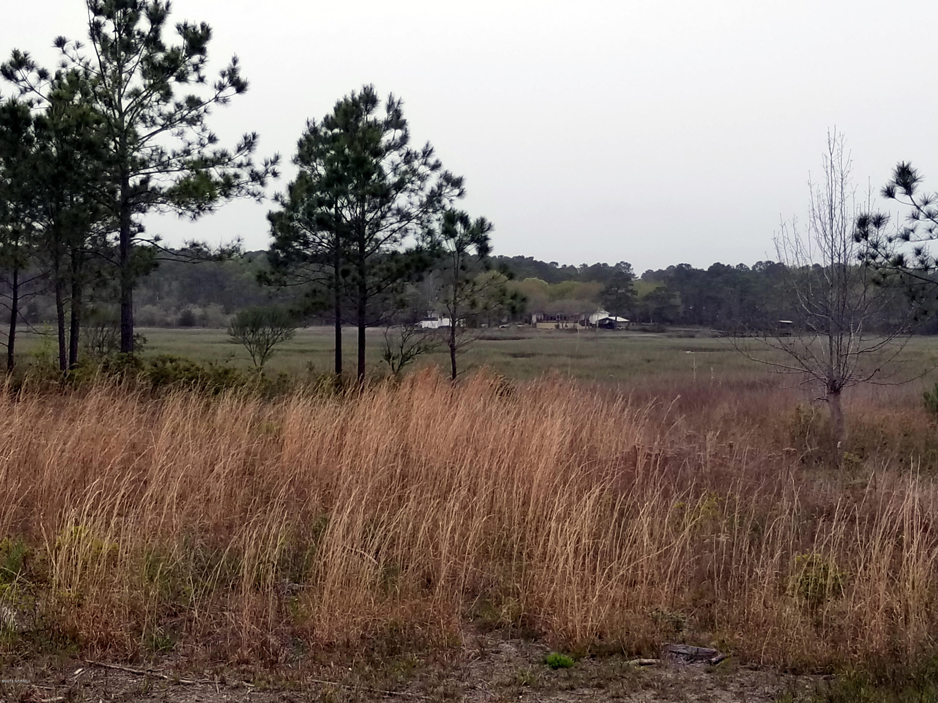 Lot 5 Marsh Acres Court, Supply, North Carolina 28462, ,Undeveloped,For sale,Marsh Acres,100111160