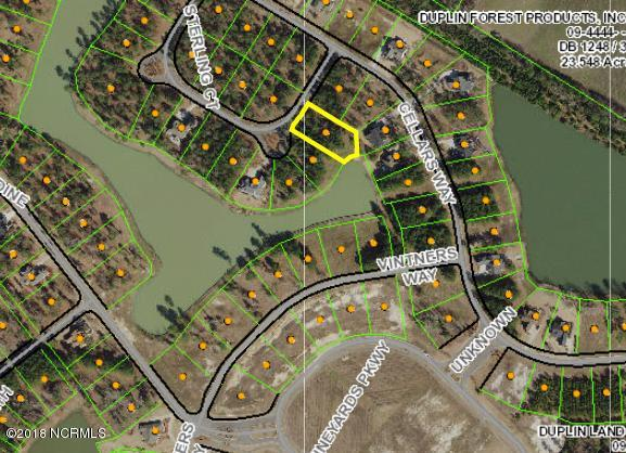 178 Sterling Court, Wallace, North Carolina, ,Residential land,For sale,Sterling,100112745