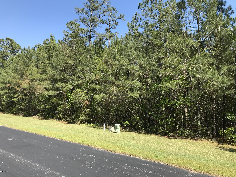 149 Tarpon Way, Beaufort, North Carolina 28516, ,Residential land,For sale,Tarpon,100113391