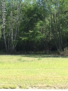 1610 Caracara, New Bern, North Carolina, ,Residential land,For sale,Caracara,100113486