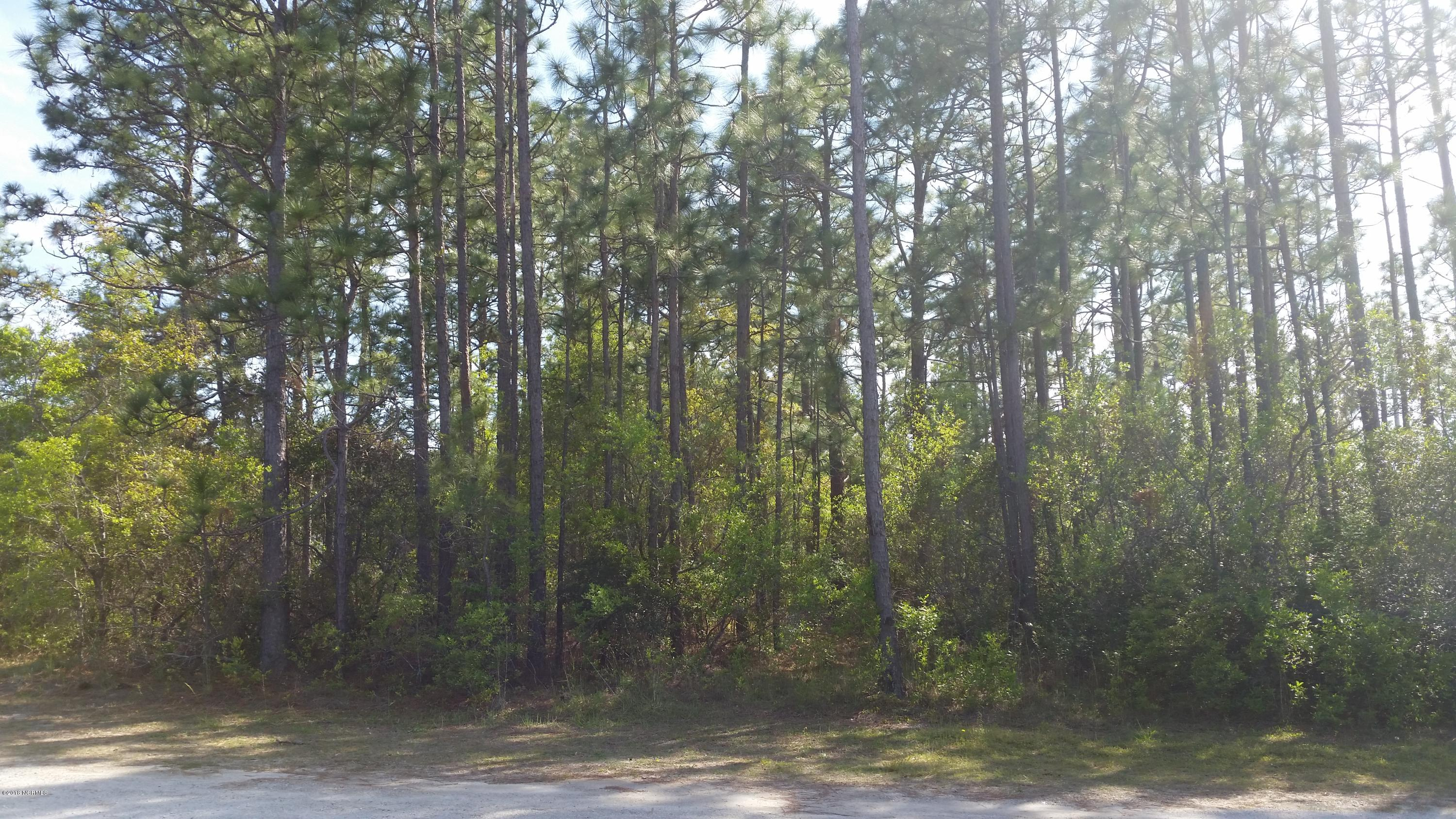 Lot 40 Boiling Spring Road, Southport, North Carolina, ,Wooded,For sale,Boiling Spring,100113481