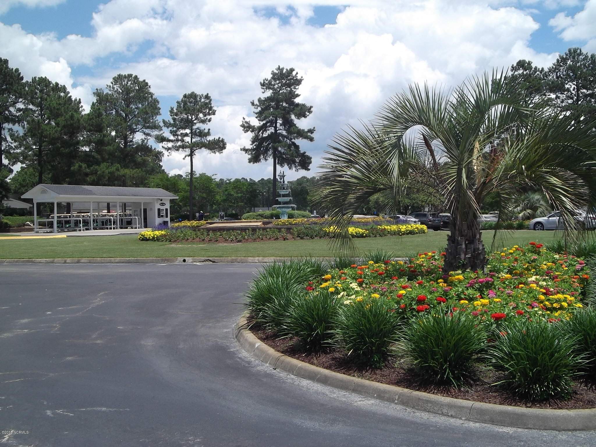 245 Ravennaside Drive, Calabash, North Carolina 28467, ,Residential land,For sale,Ravennaside,100113936