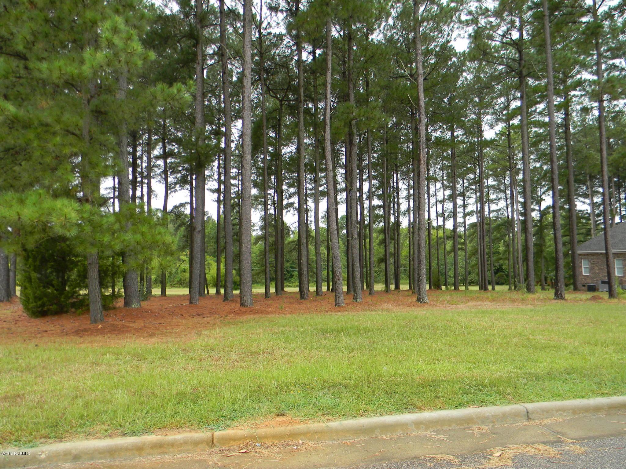 129 Zachariah Road, Nashville, North Carolina 27856, ,Residential land,For sale,Zachariah,100114179