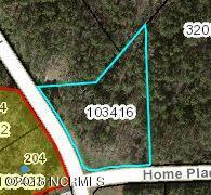 3402 Home Place Court, Nashville, North Carolina 27856, ,Residential land,For sale,Home Place,100114203