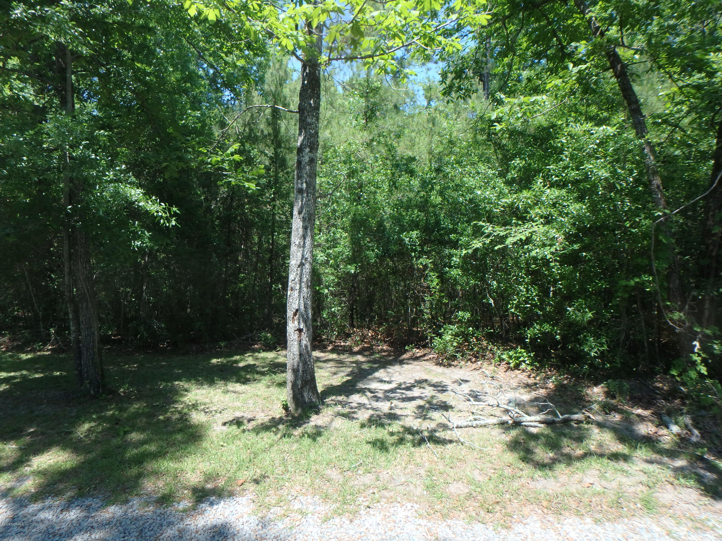 Lot 5 Riverview Drive, Burgaw, North Carolina 28425, ,Undeveloped,For sale,Riverview,100115967