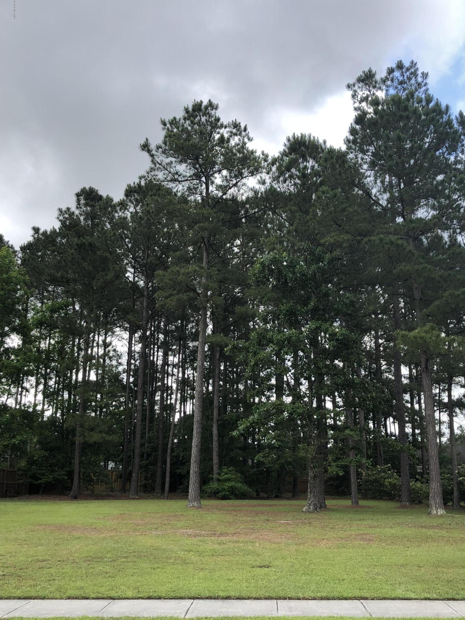 Carolina Plantations Real Estate - MLS Number: 100117038