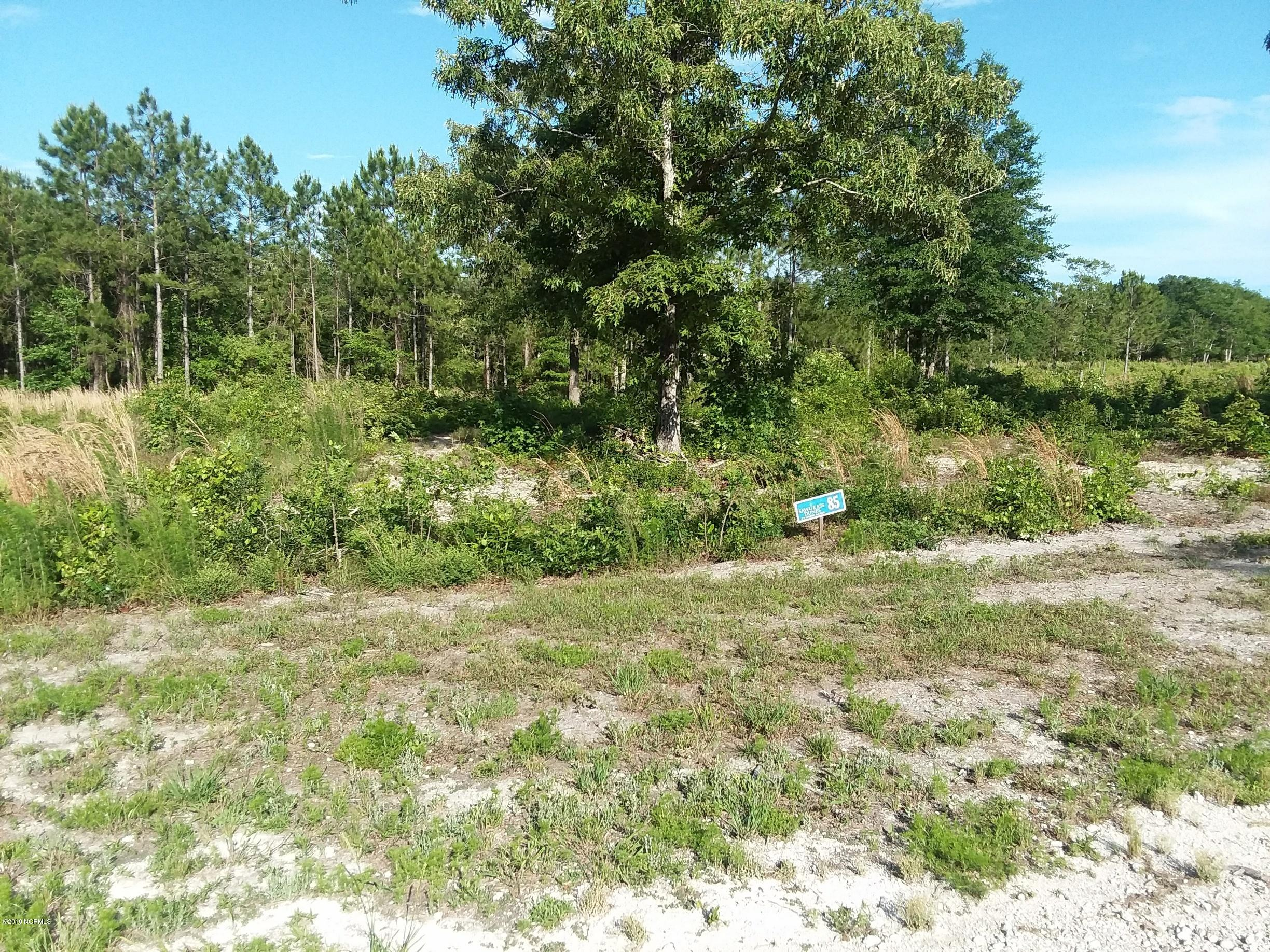 3014 Aster Lane, Supply, North Carolina, ,Residential land,For sale,Aster,100117625