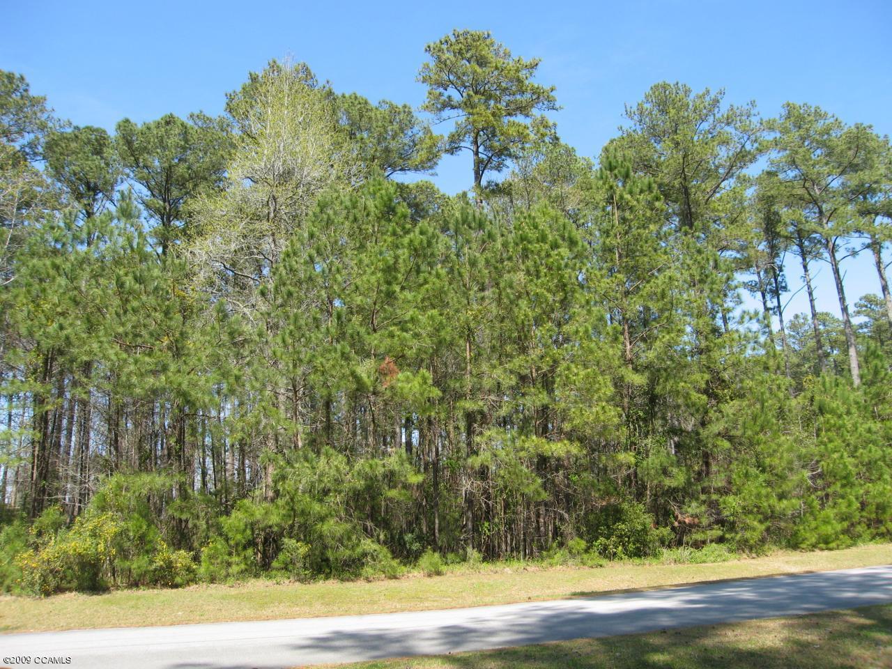 144 Cummins Creek Road, Beaufort, North Carolina 28516, ,Residential land,For sale,Cummins Creek,100117629